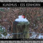www.KUNIMUS.eu